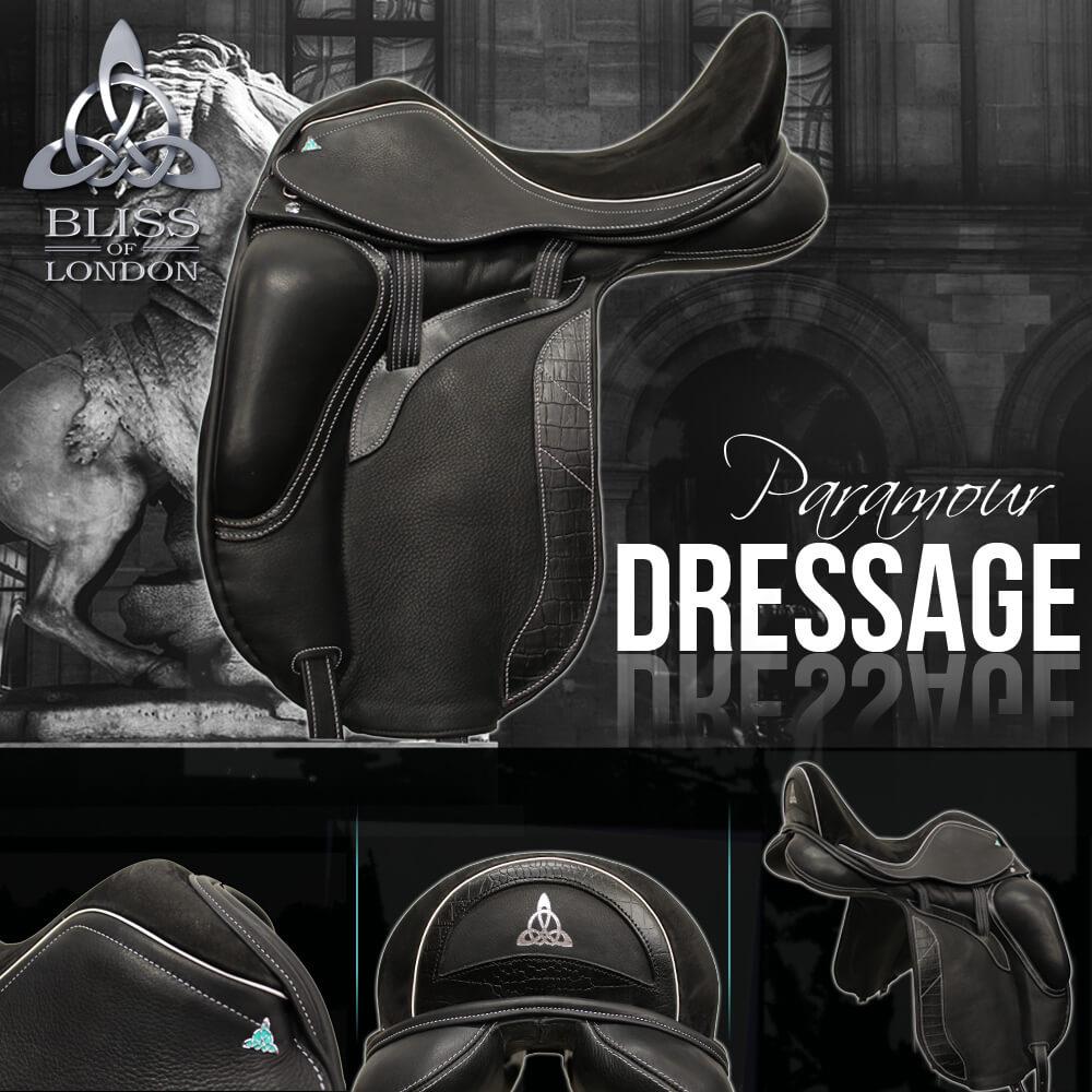3-Bliss-Paramour-dressage-blck-white-stone-horse-Aurelius