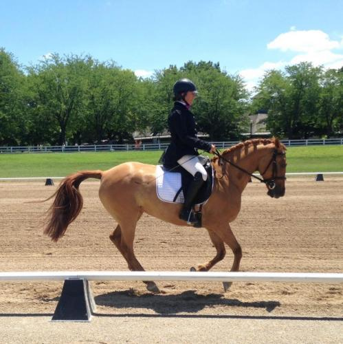 Kate in the dressage arena